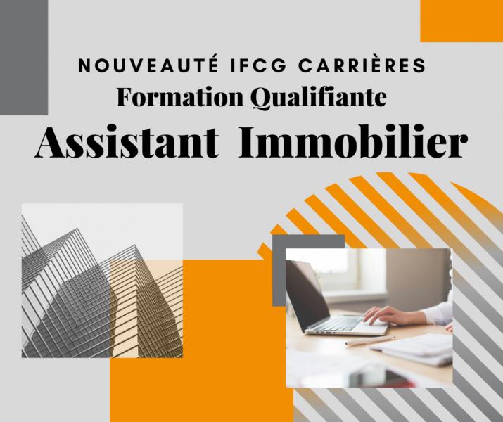Publication TP Assistant Immobilier